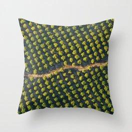In a Row Throw Pillow
