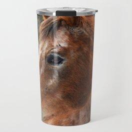 Legend the Appaloosa  Travel Mug