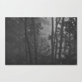 Still Here Canvas Print
