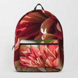 Kinship Backpack