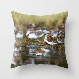 Shorebirds I Throw Pillow