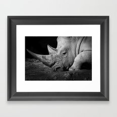 Rhino II Framed Art Print