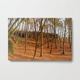 Tangerine forest Metal Print