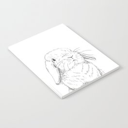 Curious Holland Lop Bunny Notebook