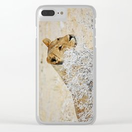 NAMIBIA ... The Lioness II Clear iPhone Case