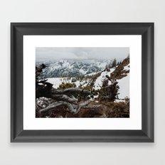 Wenatchee National Forest Framed Art Print