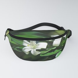 Two White Flowers at McKee botanical gardens in Vero Beach Florida Fanny Pack