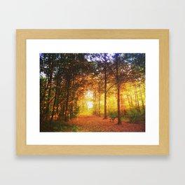 The Preserve Framed Art Print