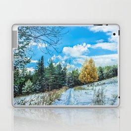 Larch in late autumn Laptop & iPad Skin