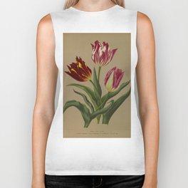 Arendsen, Arentine H. (1836-1915) - Haarlem's Flora 1872 - Single Early Tulips 1 Biker Tank