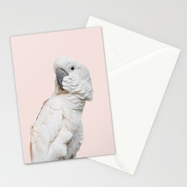 Cockatoo Parrot Photography | Blush Pink | Peach | Happy | Tropical | peek-a-booFun | Paradise Stationery Cards