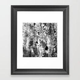 Woodland Wander Framed Art Print