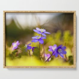 Wildflowers Spring Forest #decor #society6 #buyart Serving Tray