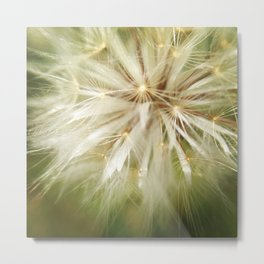 Flower of wishes Metal Print