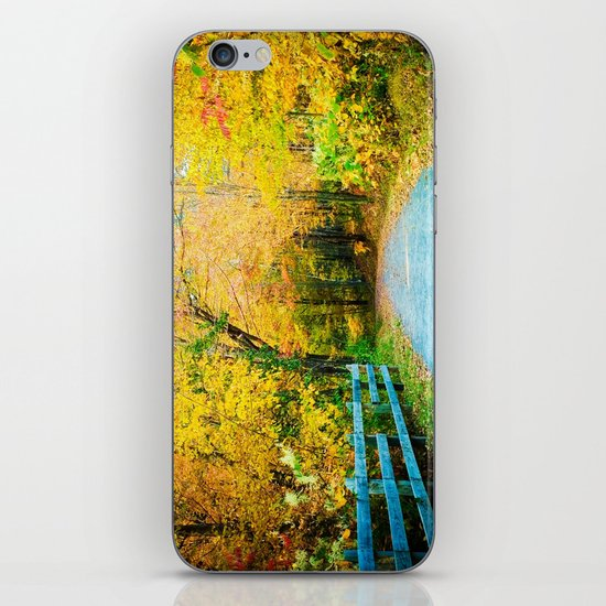 Autumn Trail iPhone & iPod Skin