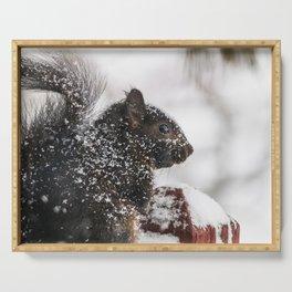 Winter Sqirrel Serving Tray
