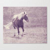 pony Canvas Prints featuring Pony by Angelandspot