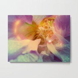 Secret Garden | Japanese rose  Metal Print