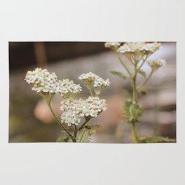 Whimsical White Flowers in Vintage Rug