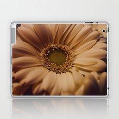 Antique Daisy Laptop & iPad Skin