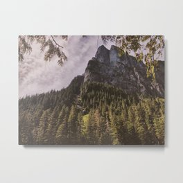 Rock Face at Barclay Metal Print