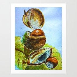 Conkers Art Print