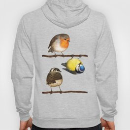 Three Little Birbs - Brown Hoody