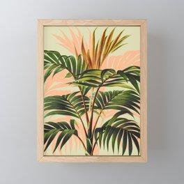 Botanical Collection 01-8 Framed Mini Art Print