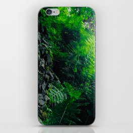 Rocks and Ferns iPhone Skin