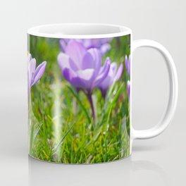 Purple Crocuses Coffee Mug
