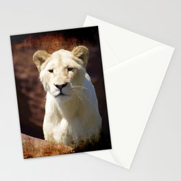 African White Lion Stationery Cards