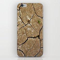dry soil iPhone & iPod Skin