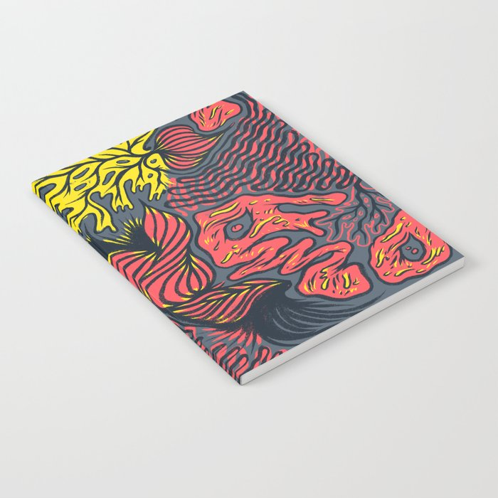 DECEMBLOB Notebook
