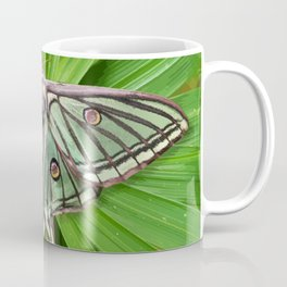 Spanish Moon Moth on Spiraling Palm Plant Coffee Mug