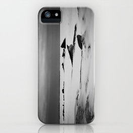 Hold Fast to Dreams iPhone Case