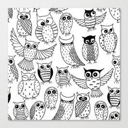 Funny owls Canvas Print