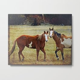 Horse Whispers Metal Print