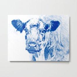 Ardnamuchan Coo - Blue Metal Print