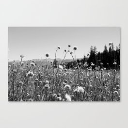 The Great Wideopen Canvas Print