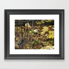 Woodsy abstract Framed Art Print