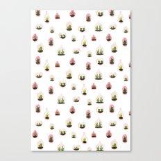 pink terrariums Canvas Print