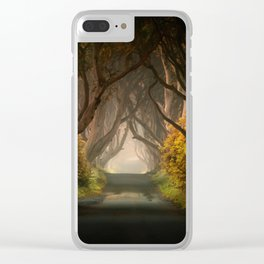 Summer's almost gone Clear iPhone Case