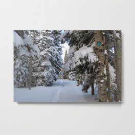 Grand Mesa Snow Metal Print