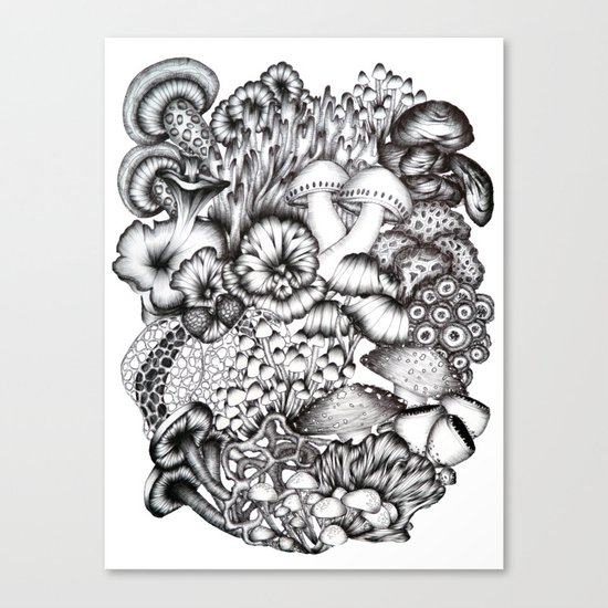 A Medley of Mushrooms Canvas Print