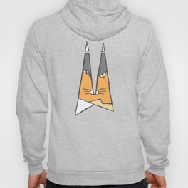 Orange cat Hoody