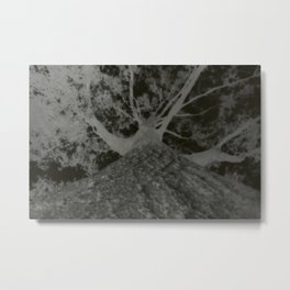 Pinhole Tree Negative Metal Print
