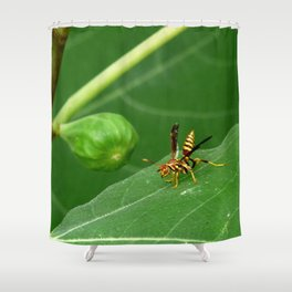 Go Ahead - Pick the Fig Shower Curtain