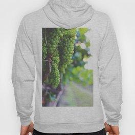 Drink More Wine in Napa Hoody