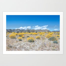 Super Bloom 7292 Paradise Joshua Tree Art Print