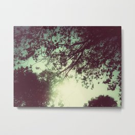 Lost in the Trees:  Green Metal Print